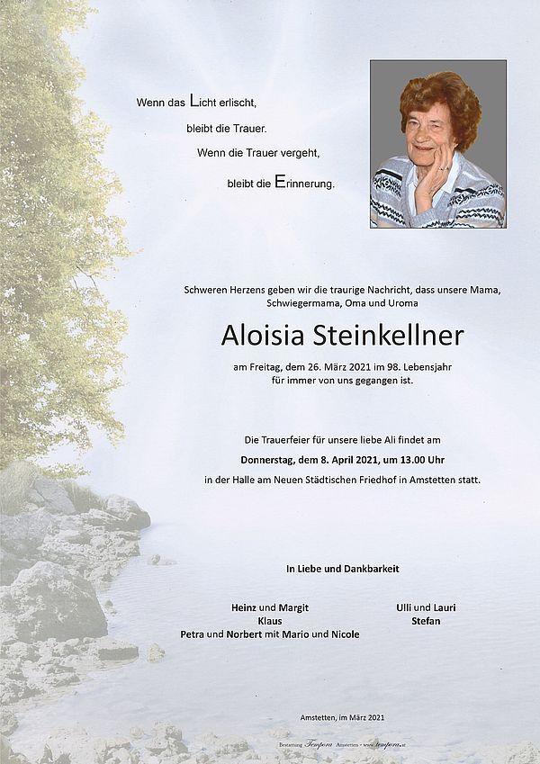 Parte von Aloisia Steinkellner