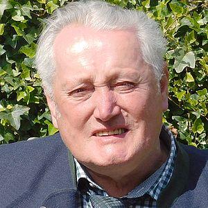 Johann Bühringer